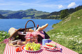 Picnic and lake — Stock Photo