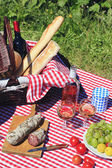 Picnic and wine — Stock Photo