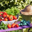 Some vegetables in a basket — Stock Photo