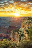 Grand Canyon at sunrise — Stock Photo