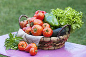 Vegetables on a table — Stock Photo