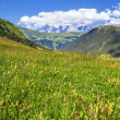 French Alps in summer — Stock Photo