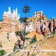 Hoodoo rock spires of Bryce Canyon — Stock Photo #34381603