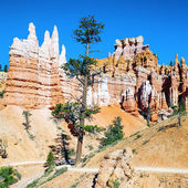 Hoodoo rock spires of Bryce Canyon — Stock Photo
