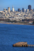 San Francisco downtown cityscape — Stock Photo