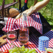 Picnic spirit — Stock Photo