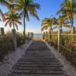 Stock Photo: Key West beach