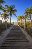 Key West beach — Stock fotografie