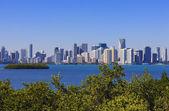 Famous view Miami — Stock Photo