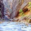 Stock Photo: Iconic bend of Virgin River