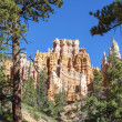 Stock Photo: Hoodoos on Mossy Creek Trail