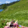 Stock Photo: Picnic in french alps