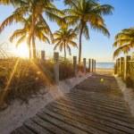 Passage to the beach at sunrise — Stock Photo #41994763
