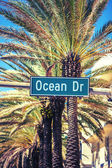 Ocean Drive street sign — Stock Photo
