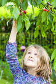 Girl and cherry tree — Stock Photo