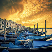 Venice at sunrise — Stock Photo