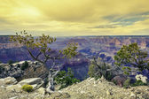 Morning light at Grand Canyon — Stock Photo