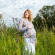Royalty-Free Stock Photo: Portrait of pregnant woman on the  field