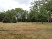 Jardins de kensington, londres — Foto Stock