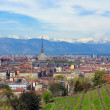 Turin view - Stockfoto