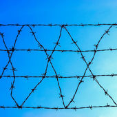 Barbed wire — Foto Stock