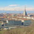 Stock Photo: Turin view