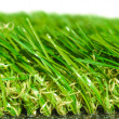 Artificial grass — Stock Photo #21264543