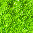 Artificial grass — Stock Photo #21265383