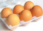 Eggs picture — Stock Photo