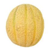 Melon picture — Stock Photo