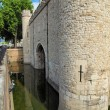 Traitors Gate — Stock Photo #21318673