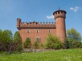 Medieval castillo de turín — Foto de Stock