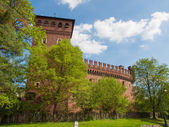 Medieval Castle Turin — Stock Photo