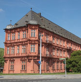 Romish Germanisches Zentralmuseum Mainz — Stock Photo
