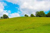 Primrose hill, london — Stockfoto