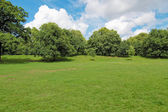 Jardines de kensington, londres — Foto de Stock