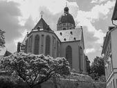 St stephan kilise mainz — Stok fotoğraf