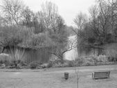 St james park — Foto de Stock