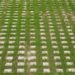 Car parking lot grass — Stock Photo #29817089
