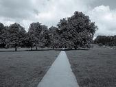Regents park, londýn — Stock fotografie