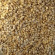 Stock Photo: Sesame seeds