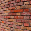 Red bricks — Stock Photo #30079331
