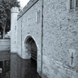 Traitors Gate — Stock Photo #30129561