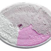 アイス クリーム — ストック写真