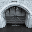 Traitors Gate — Stock Photo #30182337