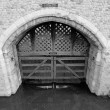 Traitors Gate — Stock Photo #30244399
