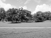 Kensington gardens London — Stockfoto