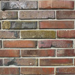 Brick wall — Stock Photo #30363437
