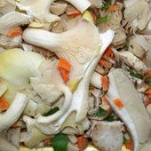 蘑菇图片 — 图库照片