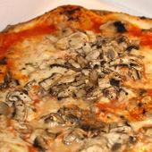 Mushroom Pizza — Foto de Stock